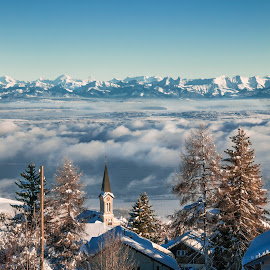 The Alps from Chasseron by Christian Diboky - Landscapes Mountains & Hills ( clouds, vaud, winter, village, church, fog, snow, trees, switzerland, panorama, chasseron, alps,  )