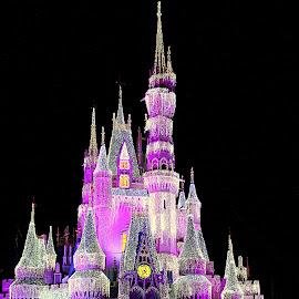 Cinderella's Castle at Christmas by Lisa Silva - Buildings & Architecture Public & Historical ( walt disney world, lights, wdw, florida, ice, magic kingdom, christmas, castle, night, cinderella )