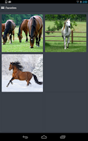 Screenshot of Horse Wallpapers