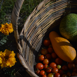 Souper by Brian  Boyle - Food & Drink Ingredients ( calda, photograph, tomato, brian boyle, soup, photography, ingredients, food, drink, basket, photographer, squash, bb, yukonbrianboyle, souperl )