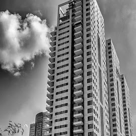 Tel Aviv by Robert Namer - Buildings & Architecture Other Exteriors ( clouds, skyscraper, black and white, buildings, cloudscape, perspective, cityscape, landscape )