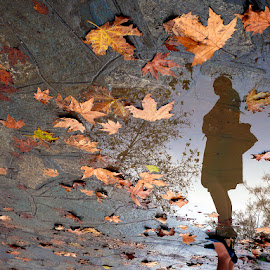 Taste of autumn by George Petridis - City,  Street & Park  City Parks ( water, orange, reflection, autumn, woman, fallen, trees, siluet, yellow, leaves, rain )