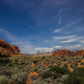 Snow Canyon by Daniel Crowder - Landscapes Deserts (  )