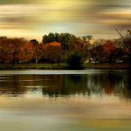 Evening hours by Dawn Marie - Nature Up Close Water ( clouds, water, reflection, sky, lagoon, park, nature, sunset, creek, nikon, pond )
