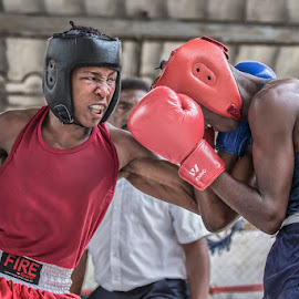 That Killer Instinct by Nicholas Hill - Sports & Fitness Boxing ( fight, knockout, boxing, havana, cuba )