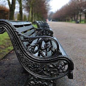 cast iron by Almas Bavcic - Artistic Objects Other Objects