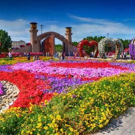 Dubai Miracle Garden 2 by Braggart Reigh - City,  Street & Park  City Parks ( city parks, parks, streets, landscapes, flowers,  )