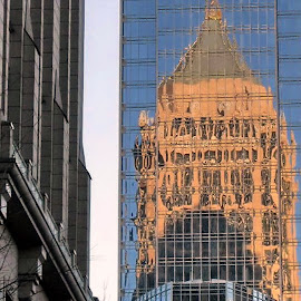 Echo by Jody Frankel - Buildings & Architecture Other Exteriors ( contrast, reflection, buildings, mirror image, downtown )
