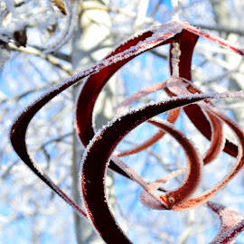 Spinning Frost by Derrick Leiting - Novices Only Objects & Still Life ( clear, winter, red, sky, decorative, cold, blue, copper, ice, snow, frost )