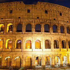 Colosseum by Nicolin Vladimir - Buildings & Architecture Statues & Monuments ( roma, coloseum, colosseum, rome, ruin, ruins )
