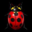 BabyLadybug