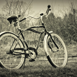 Cruiser by Nenad Milic - Transportation Bicycles