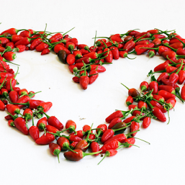 Chili Heart by Vrinda Mahesh - Food & Drink Fruits & Vegetables ( ingredients, macro, red pepper, red, thai hot pepper, chilis, food, chili heart, spicy, white background, heart shaped )