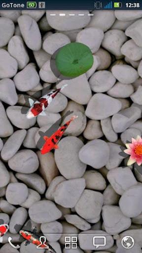 3D Koi Pond Reality Live Wallp