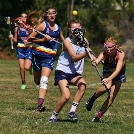 The struggle by Alvin Simpson - Sports & Fitness Lacrosse ( girls, ball, stick, blue, grass, sports, lacrosse,  )