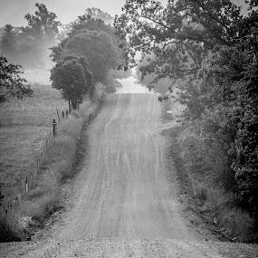 by Tammy Drombolis - Black & White Landscapes (  )