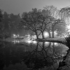 night in the park by Doug Clement - Black & White Landscapes ( water, b&w, nature, park, white, trees, forest, night, woods, black )