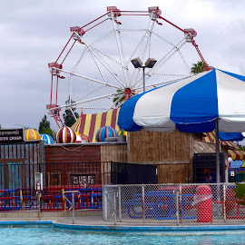 Wheel by Michael Loen - City,  Street & Park  Amusement Parks