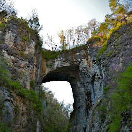 Natural Bridge by Tyrell Heaton - Landscapes Caves & Formations ( natural bridge, virginia, cave, shenandoah, tunnel )