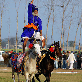 Double Horse Riding by Rakesh Syal - News & Events Sports (  )