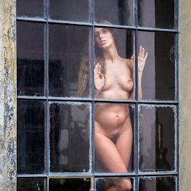 longing by Reto Heiz - Nudes & Boudoir Artistic Nude ( nude, indoor, window, nudeart, longing )