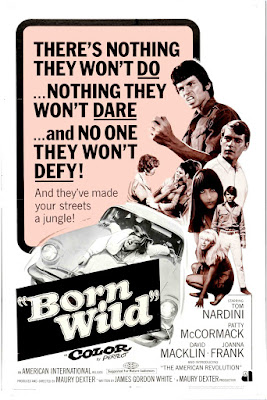 Born Wild (aka The Young Animals) (1968, USA) movie poster