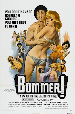Bummer (aka The Sadist) (1973, USA) movie poster
