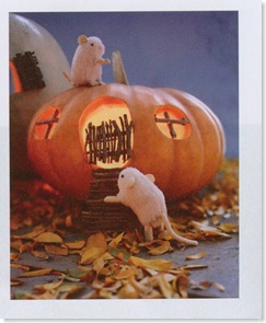 Mouse House Pumpkin
