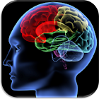 Shuffle 'n Slide Brain Game icon