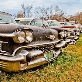 Old Ladies by David Sweeter - Transportation Automobiles