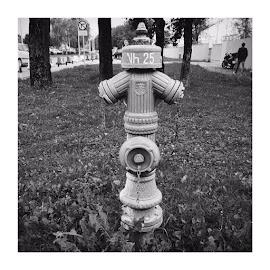 by Florian Schweer - City,  Street & Park  City Parks ( stilllife, blackandwhite, street )