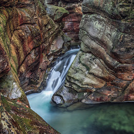 The Water Chute by Aaron Campbell - Landscapes Caves & Formations ( water, luzerne county, hdr, textures, moss, pennsylvania, seven tubs natural area, lichen, plains township, nature, the tubs, motion, slow shutter )