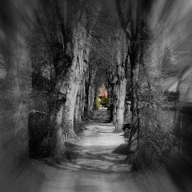 by Baerbel Pleuger - Digital Art Places ( selective color, pwc )