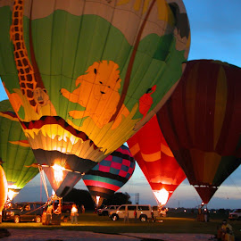 Balloon Festival Houston by Robin Morgan - News & Events Entertainment ( hot air balloon, houston, festival, balloon )
