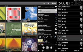 Screenshot of Bluesound