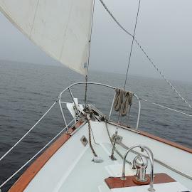 Sail Boat by Susan Hofer - Transportation Boats