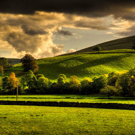 Scottish Borders by Don Alexander Lumsden - Landscapes Prairies, Meadows & Fields