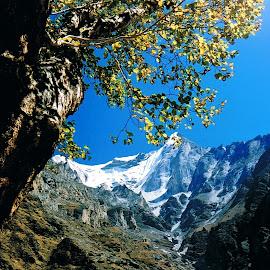 by Dibakar Sen - Landscapes Mountains & Hills