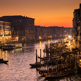 Venice at dusk by Radu Dumitrescu - City,  Street & Park  Historic Districts ( rialto, venezia, grande, gondola, bridge, canal, italy, dusk )