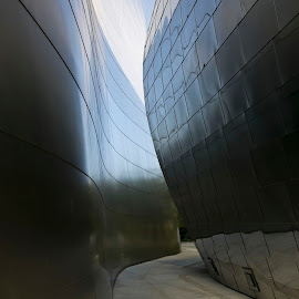 The Walt Disney Concert Hall, Los Angeles, CA by Tin Tin Abad - Buildings & Architecture Architectural Detail
