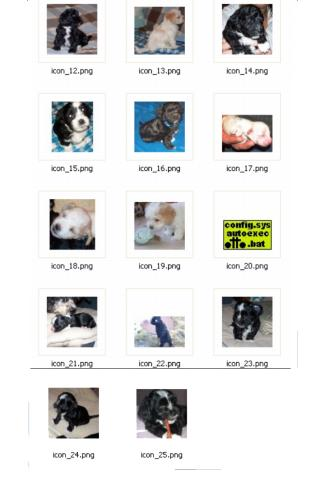 【免費個人化App】Puppy Dog Icon Crazy Home-APP點子