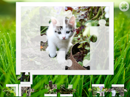 Screenshot of Cats puzzle
