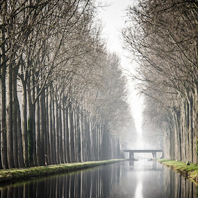 Cold weather at the channel by Arti Fakts - Landscapes Waterscapes ( water, mirror, tree, trees, bridge, reflexion, channel,  )