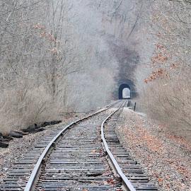 Train Tracks by Tina Marie - Transportation Railway Tracks ( train tracks, winter, nature, fall, tracks, landscapes, leaves, trains, tunnel )
