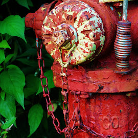 Hydrant by Lori Kulik - Artistic Objects Other Objects ( fire hydrant )