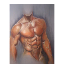 Muscle study in pastel by Fyctishus Art - Drawing All Drawing ( pastel, anatomy, life drawing, muscle, male torso )