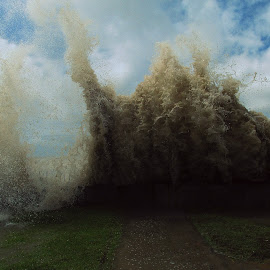IS IT TSUNAMI !!!!!!!!!!!!!!!!! by Shubhra Sau - Nature Up Close Webs