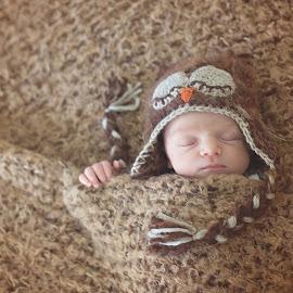 Sleepy Little Owl by Amy Gordon - Babies & Children Babies ( newborn photography, owl, amy gordon photography llc, sleeping, newborn,  )