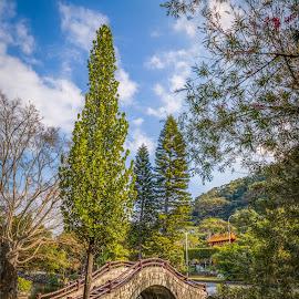 city parks by Gary Lu - City,  Street & Park  City Parks ( city parks, gary lu )