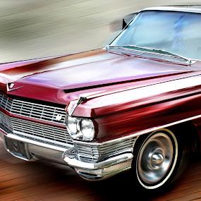 Cadillac by Joel Mcafee - Transportation Automobiles ( cadillac, auto, transportation,  )